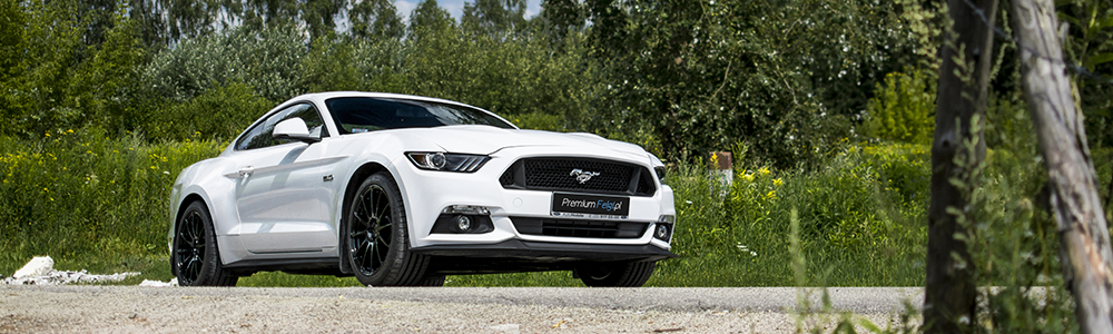 Ford Mustang GT 5.0 | BC Forged RS43